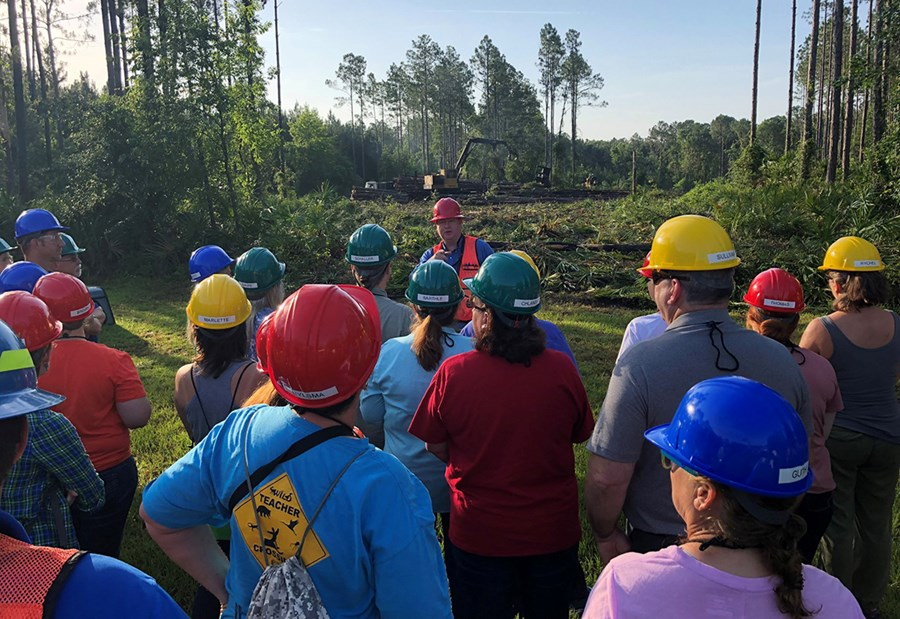 Teaching the Teachers About Sustainable Forestry