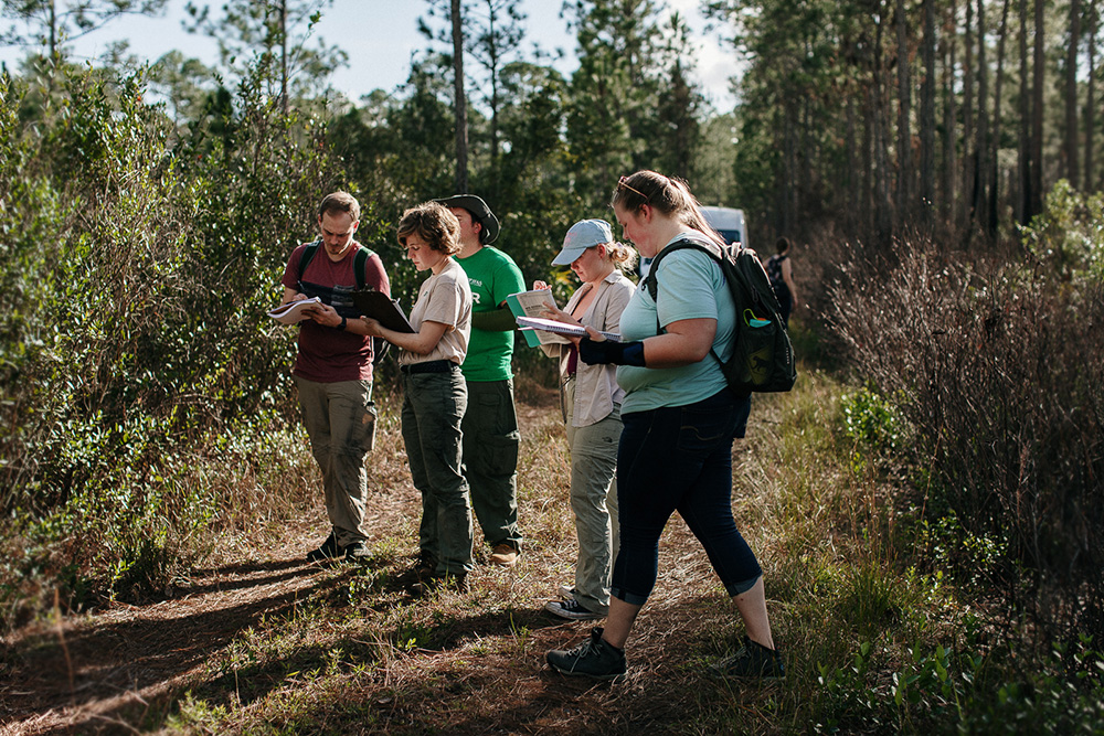 UF-Forestry-Students-in-Cary-Forest