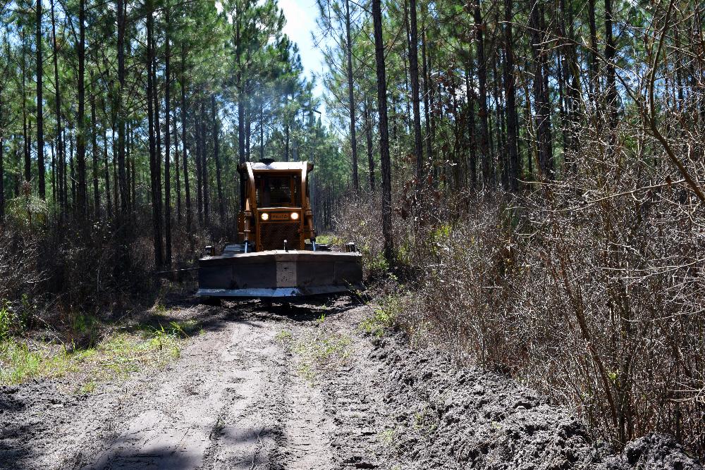 Plowing a Fire Break in the Forest