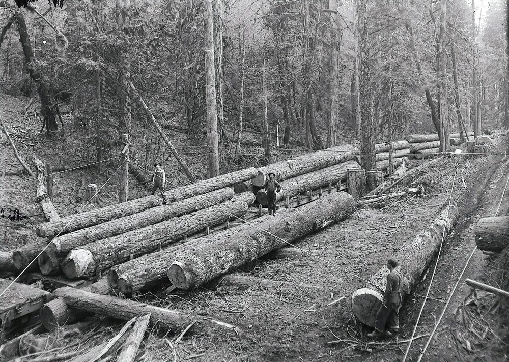 Loading logs onto Railroad cars early 1900s