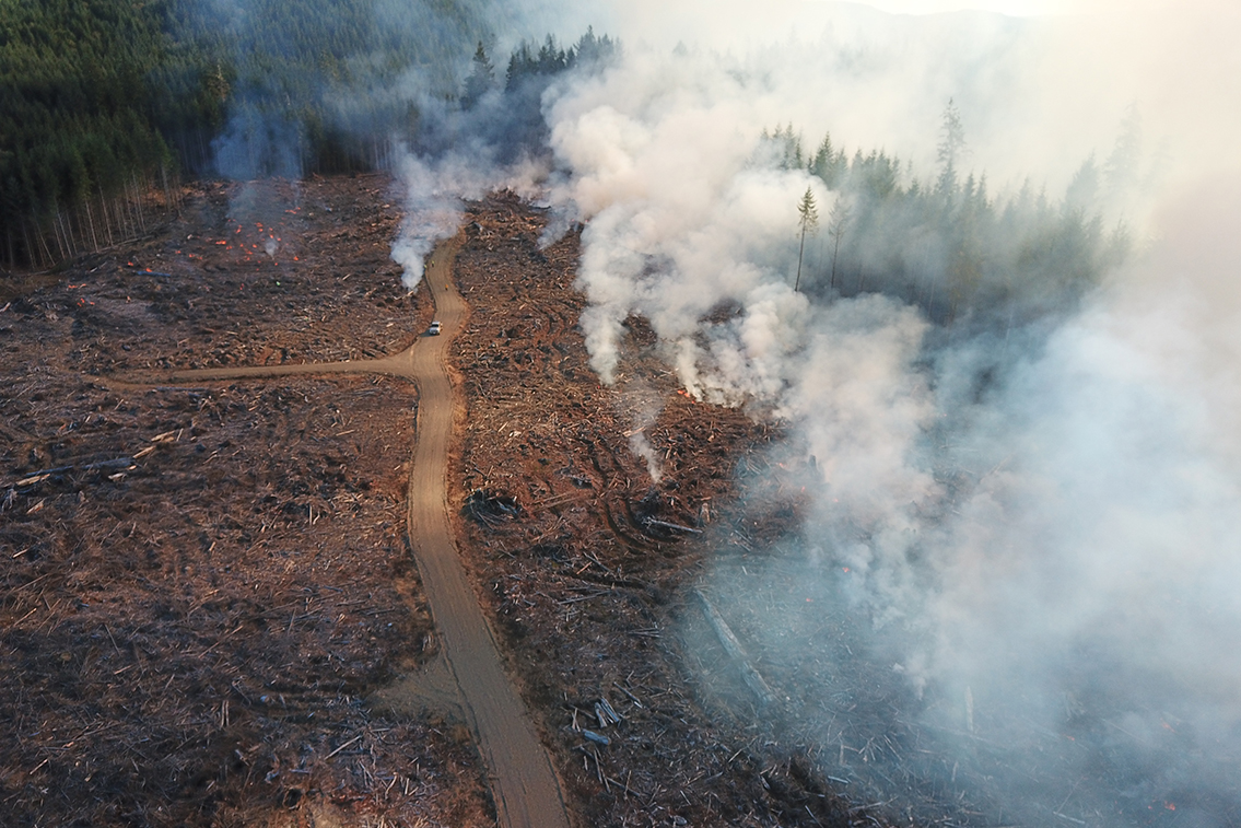 Broadcast Burn Used to Prevent Wildfire