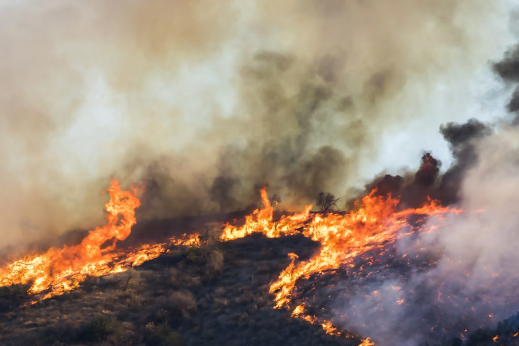 Woolsey Wildfire