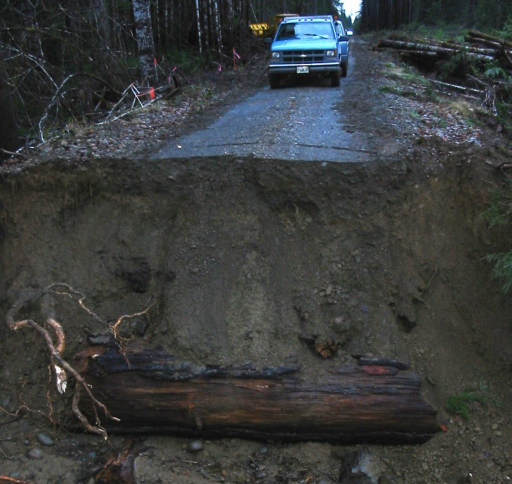 Forest Road Washout