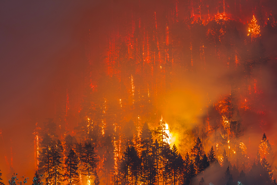 Oregon Forest Fire