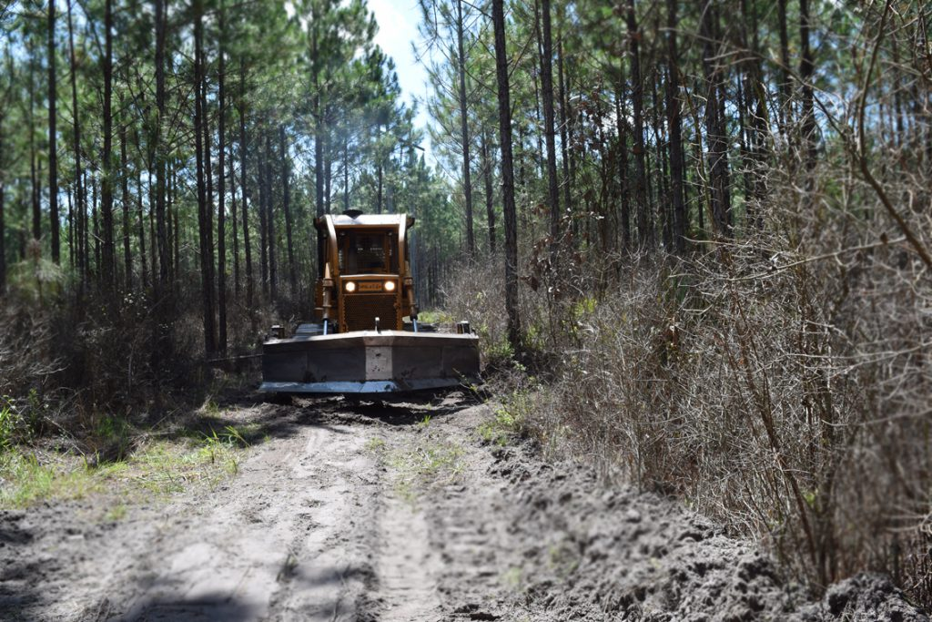 Plowing a Fire Line Forest Management