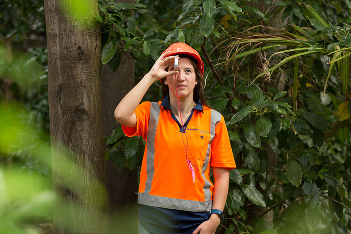 One Forestry Class Changed Everything for this NZ Forester