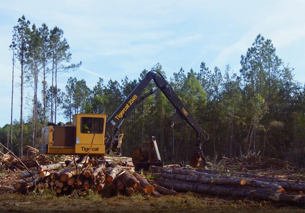 Timber harvest loader operator