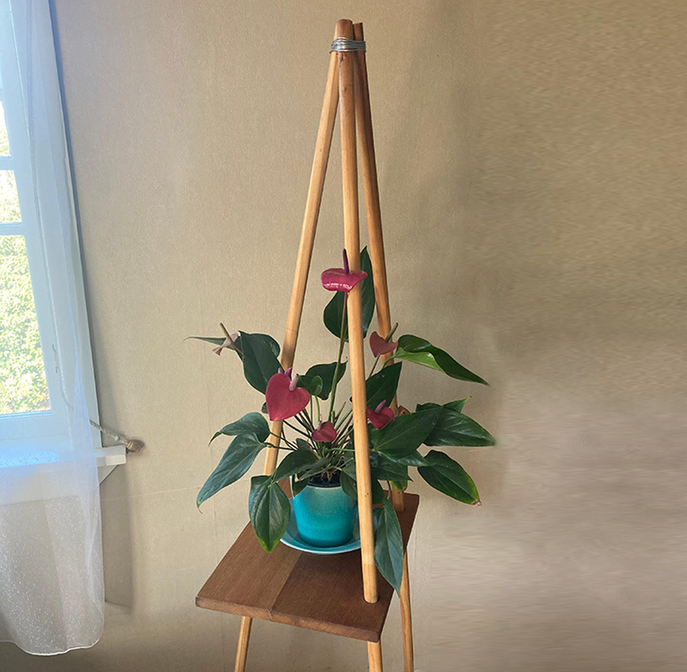 DIY wooden plant stand Sam made with a pink flowering potted plant on it